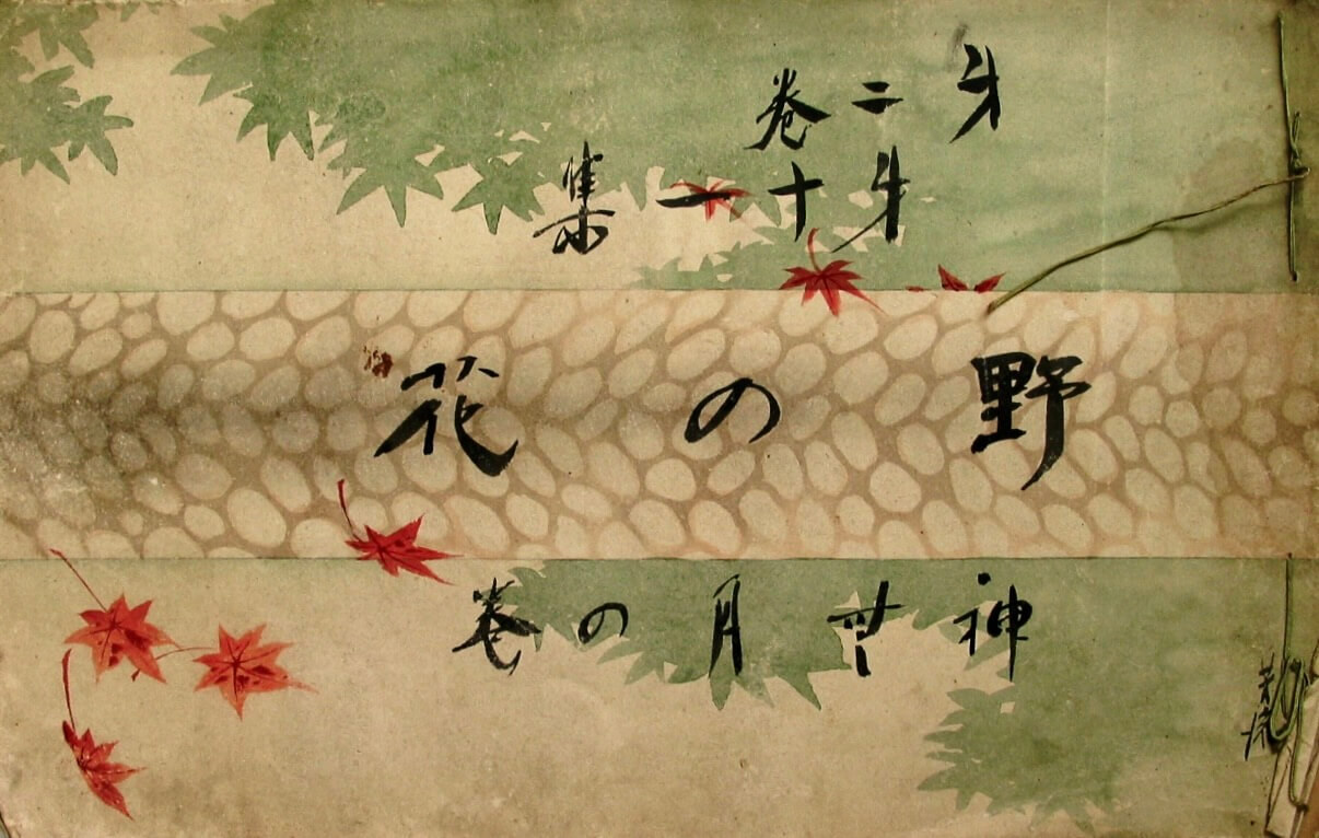 『野の花』第2巻第11集 表紙(村井芳流)