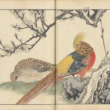 景年花鳥画譜 春ノ部