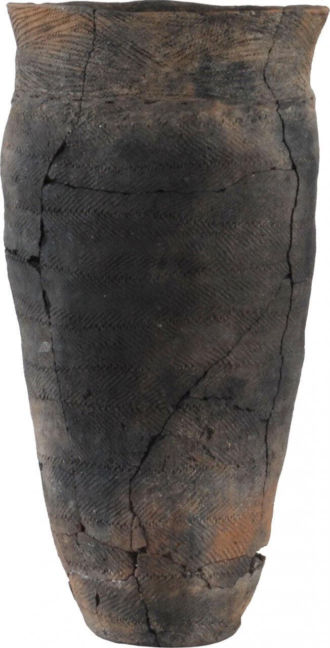 深鉢形土器 円筒下層c式(畑内遺跡出土)